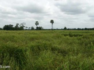 Provinz Sa Kaeo