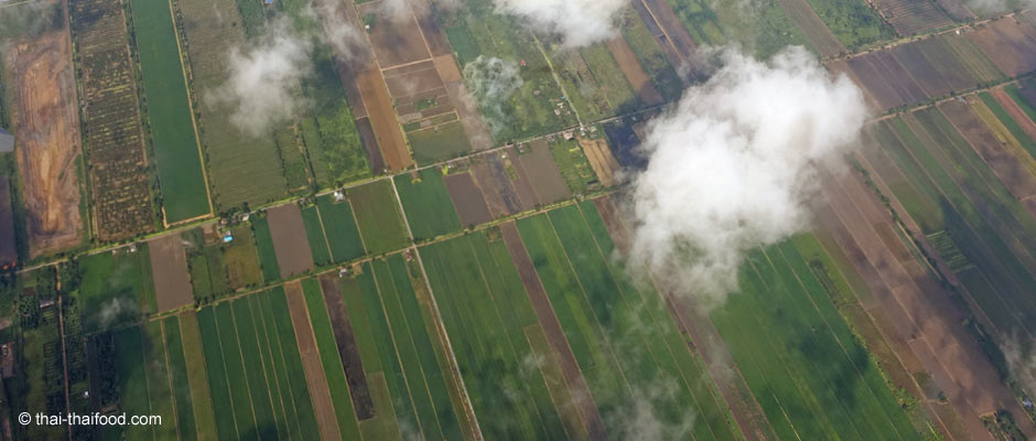 Flächenmaß Rai in Thailand | ไร่ - 1 Rai = 1600 Quadratmeter