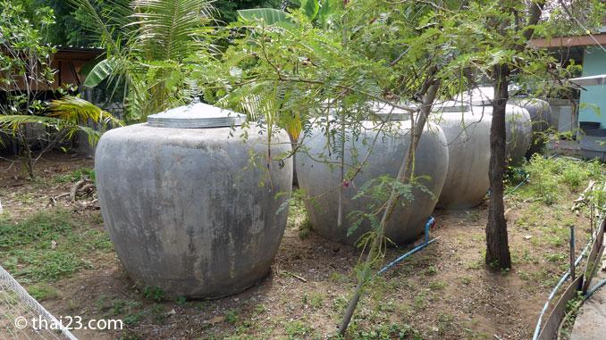 Regenwasser Thailand